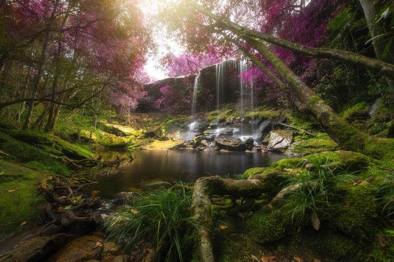 flow of abundance meditation series